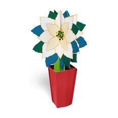White Poinsettia Holiday Card in color