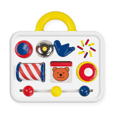 Activity Case Toy in color