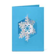 Spinning Snowflake Holiday Cards in color