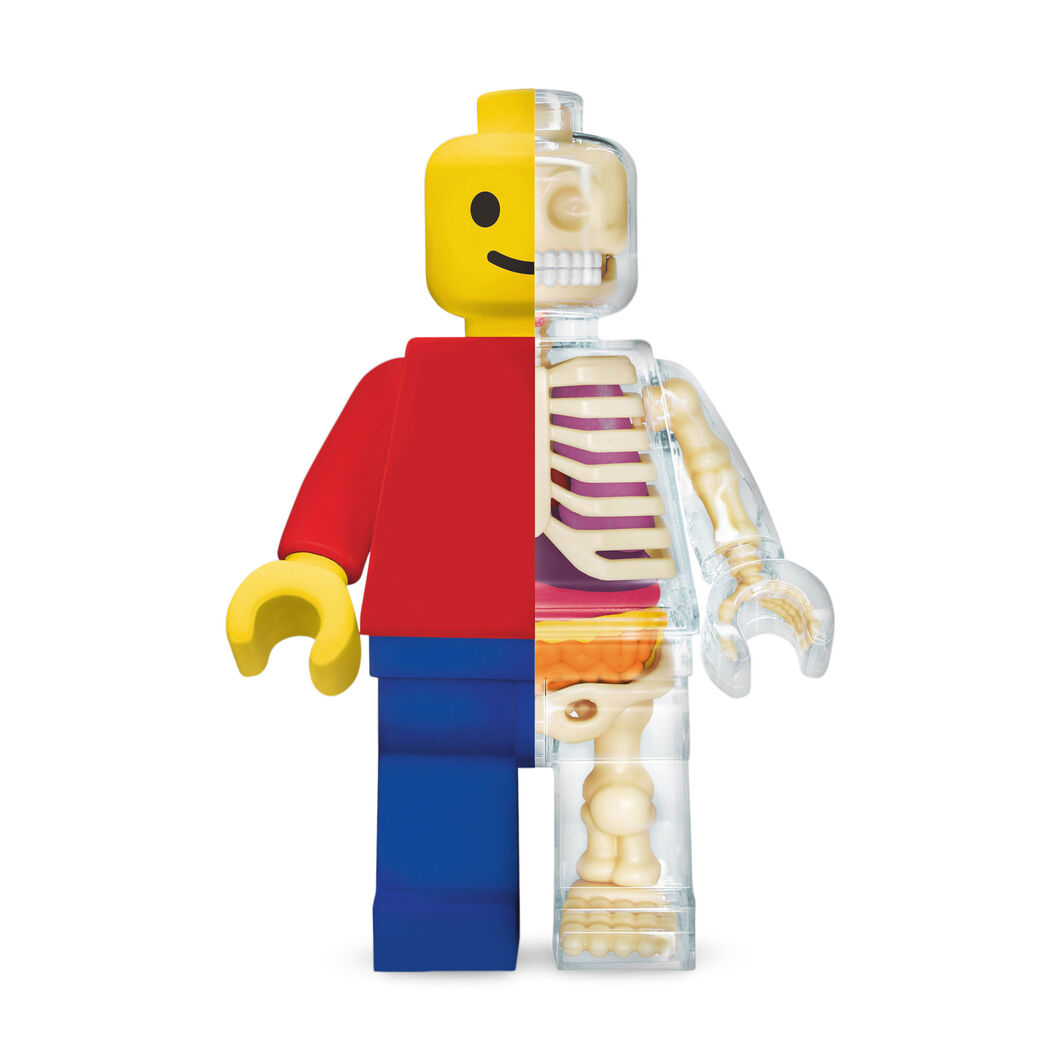 Jason Freeny Brick Man Anatomical Puzzle in color Multi