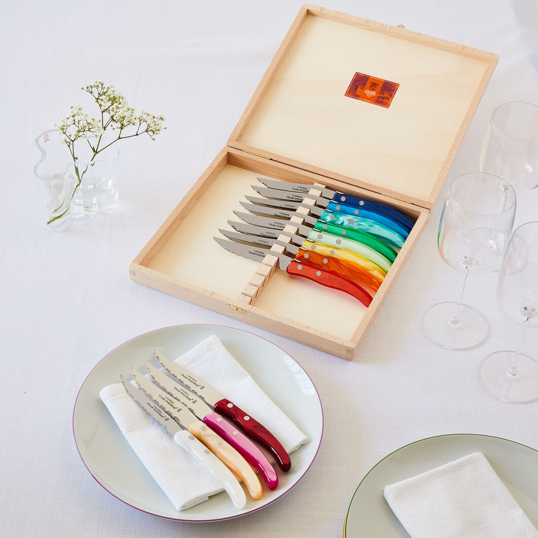 Rainbow Steak Knives - Set of 12 in color
