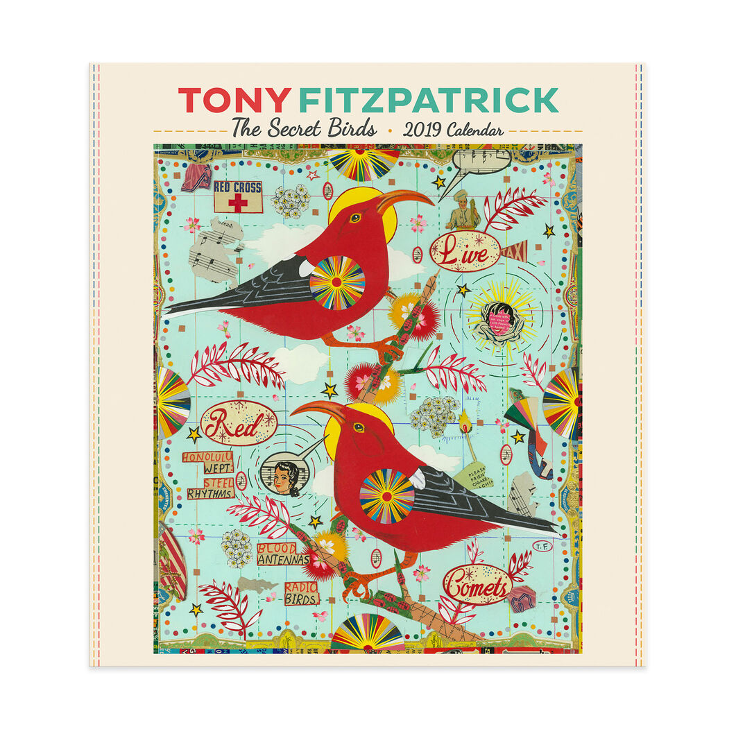 2019 Tony Fitzpatrick Birds Wall Calendar in color