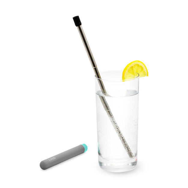 Collapsible Straw with Case in color Dark Grey