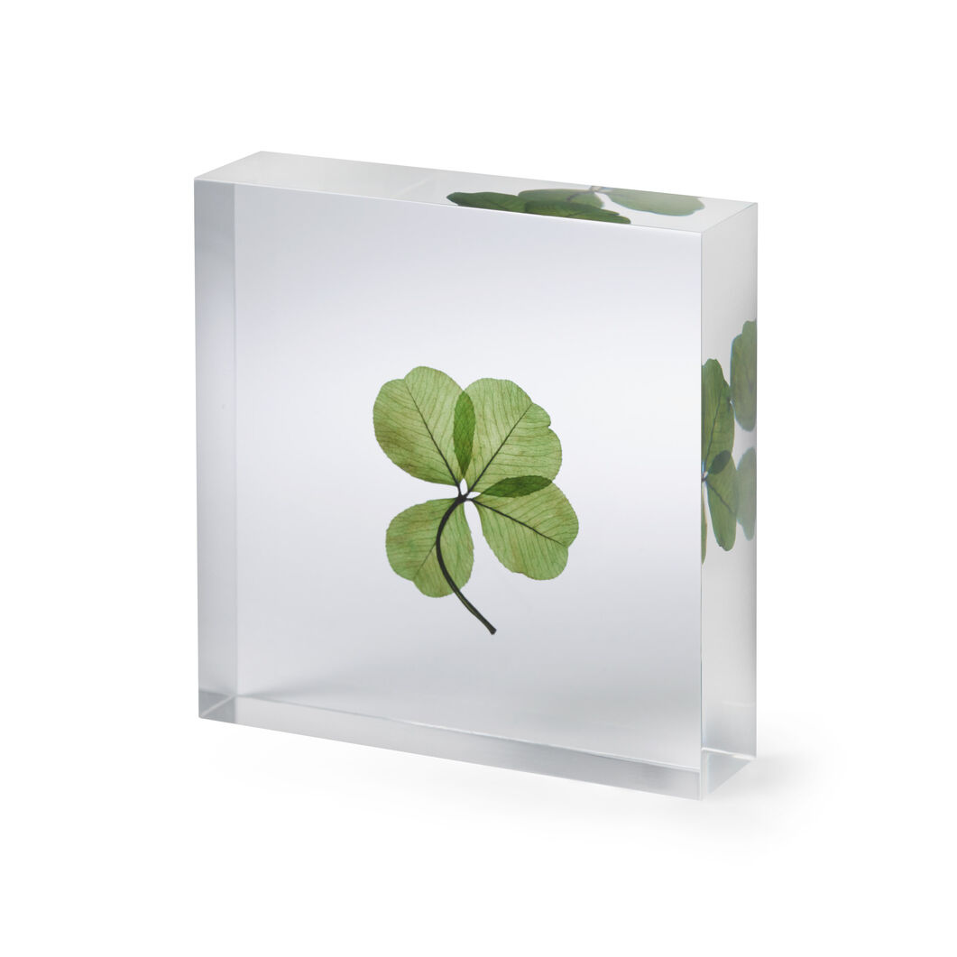 Lucky Clover Objet in color