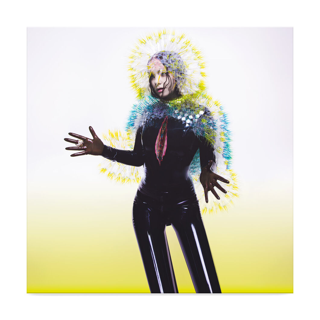 Bjork Vulnicura Vinyl in color