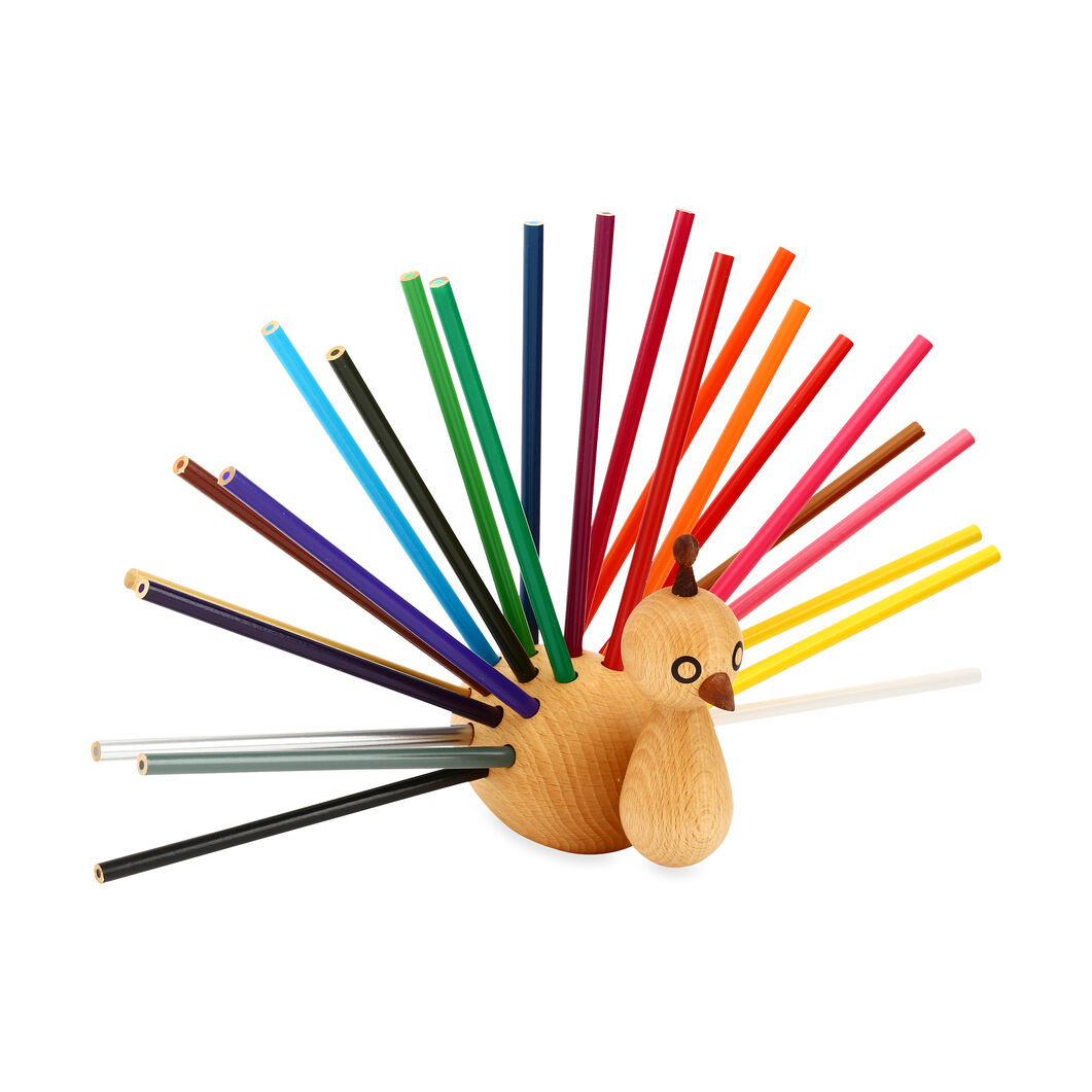 Peacock Pencil Holder in color