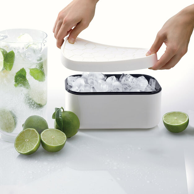 Reversible Lid Ice Box in color White