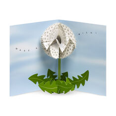 Dandelion Wishes Pop-Up Note Cards in color