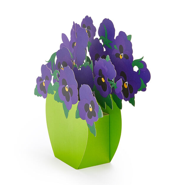 Playful Pansies Pop-Up Note Cards - Set of 6 in color