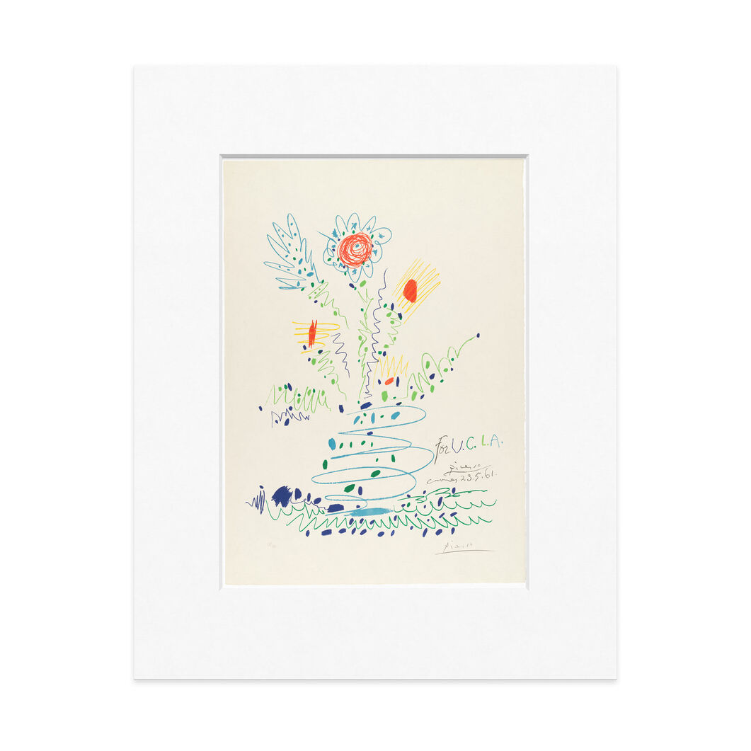 Picasso: Flowers (For U.C.L.A.) Matted Print in color