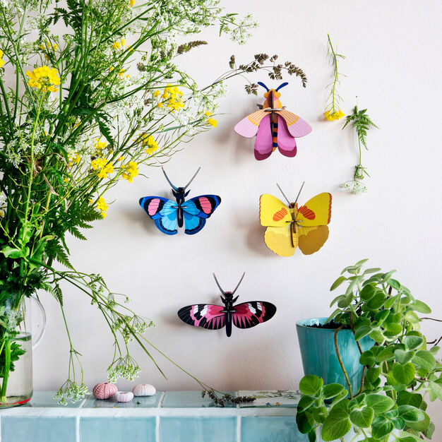 3D DIY Decorative Insects in color Longwing Bfly