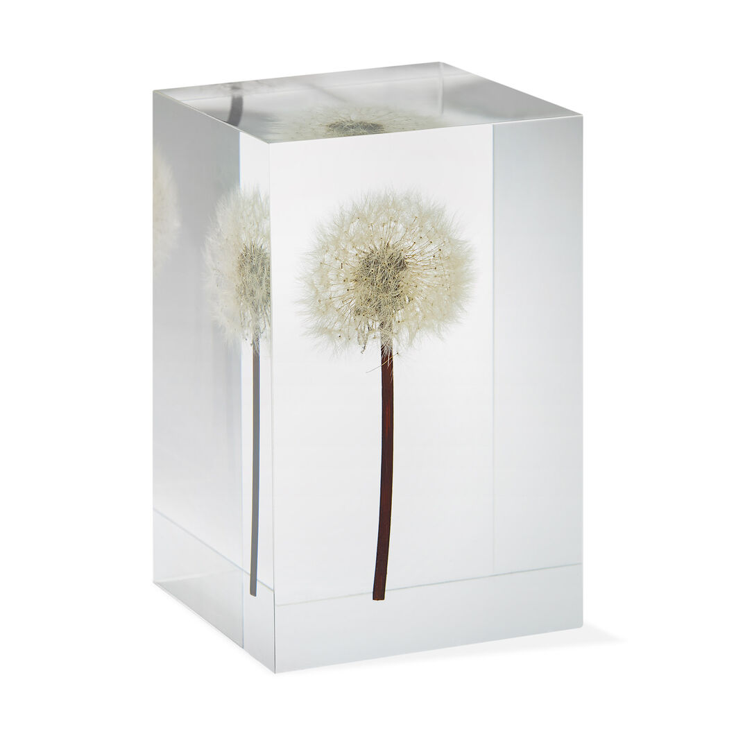 Dandelion Objet d'Art in color
