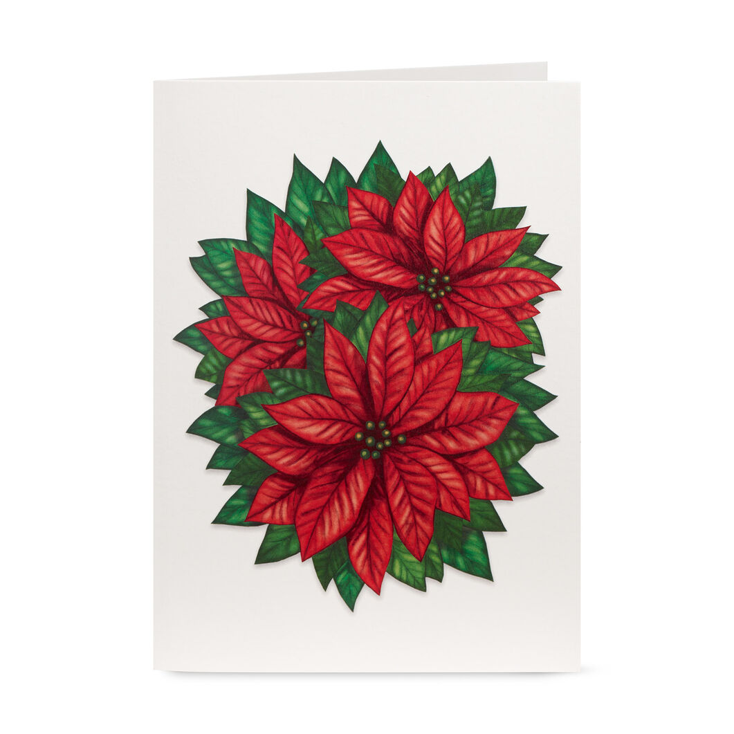 Cheerful Poinsettia Holiday Cards (Box of 8) in color
