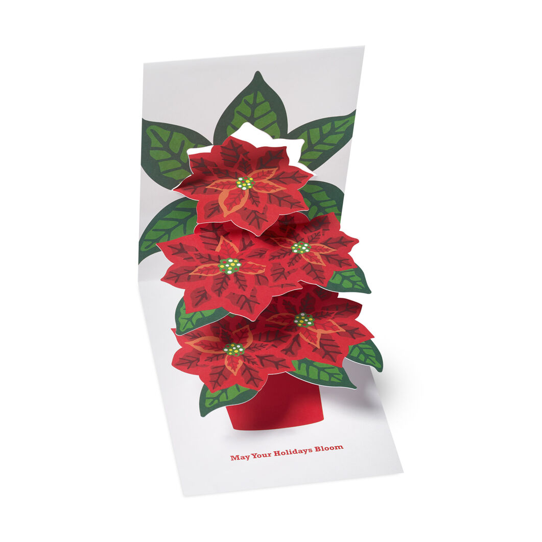 Festive Poinsettia Holiday Cards (Box of 8) in color