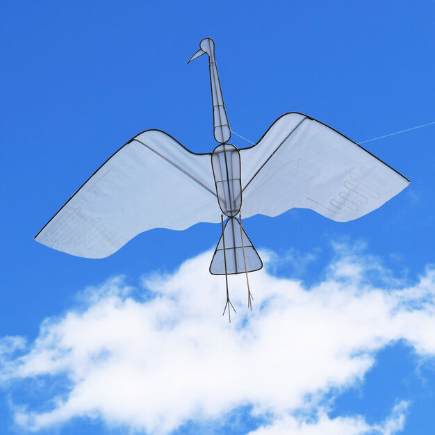 Crane Kite in color