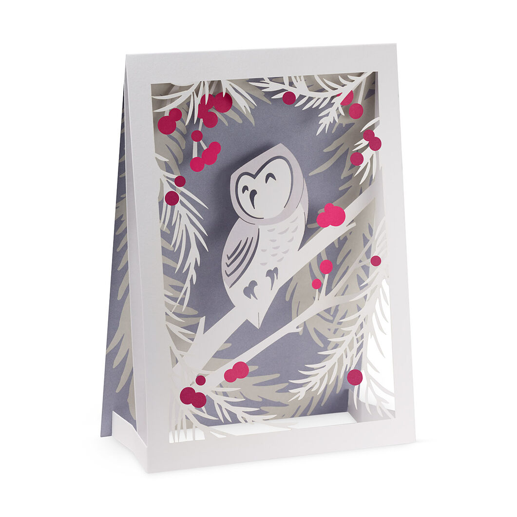 Wintry Owl Holiday Cards (Box of 8) in color