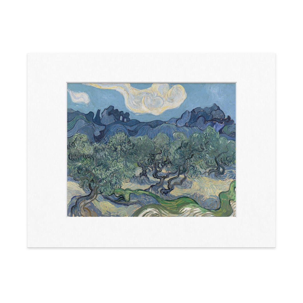 Van Gogh: The Olive Trees Matted Print in color