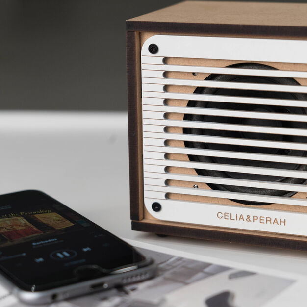 DIY Bluetooth Speaker & FM Radio in color
