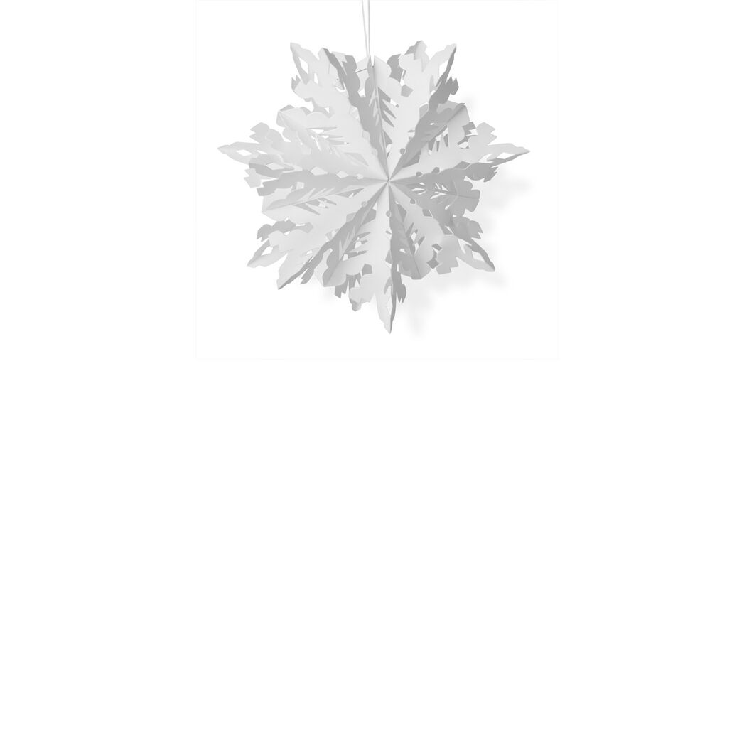 Crystal Snowflake in color