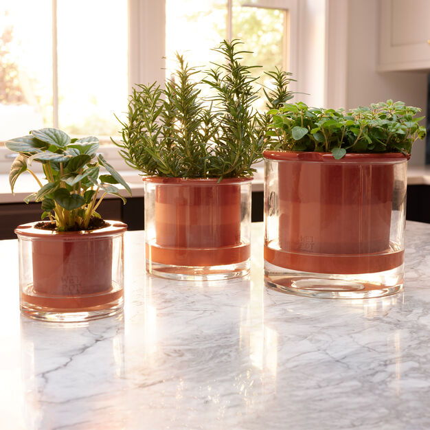 Self-Watering Wet Pots in color Terracotta