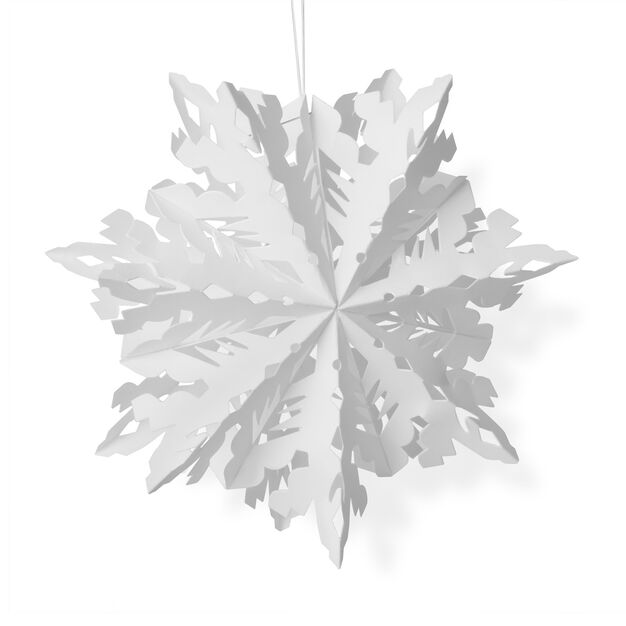 Winter Snowflake in color