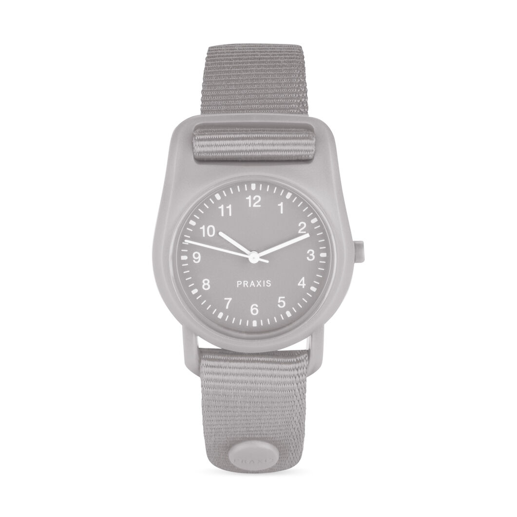 Strap Watch Gray in color