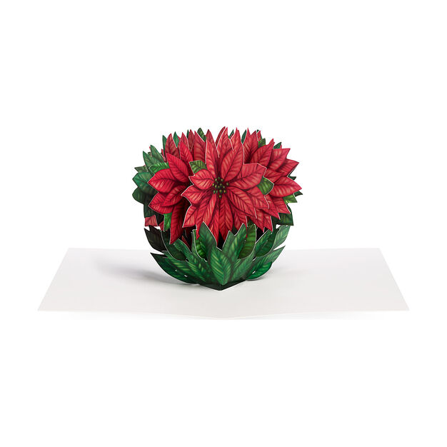 Cheerful Poinsettia Holiday Cards in color