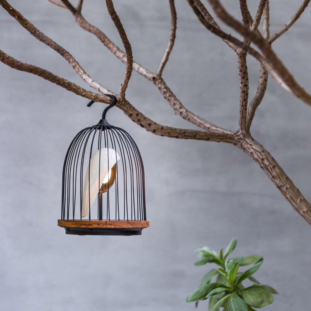 Jingoo  Birdcage Speaker Light in color