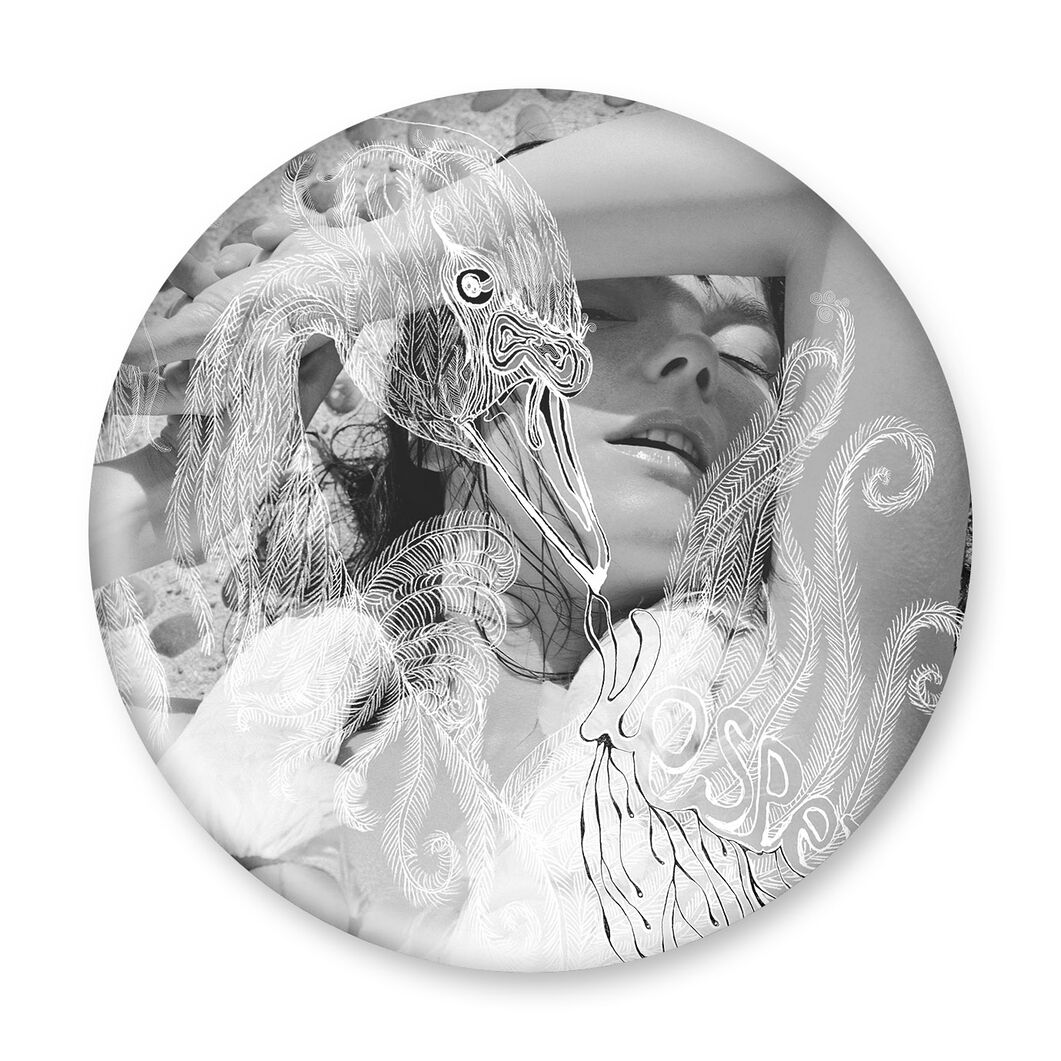 Bjork Vespertine Magnet in color Vespertine
