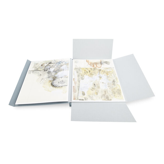 Robert Rauschenberg: ThirtyFour Drawings for Dante's Inferno in color