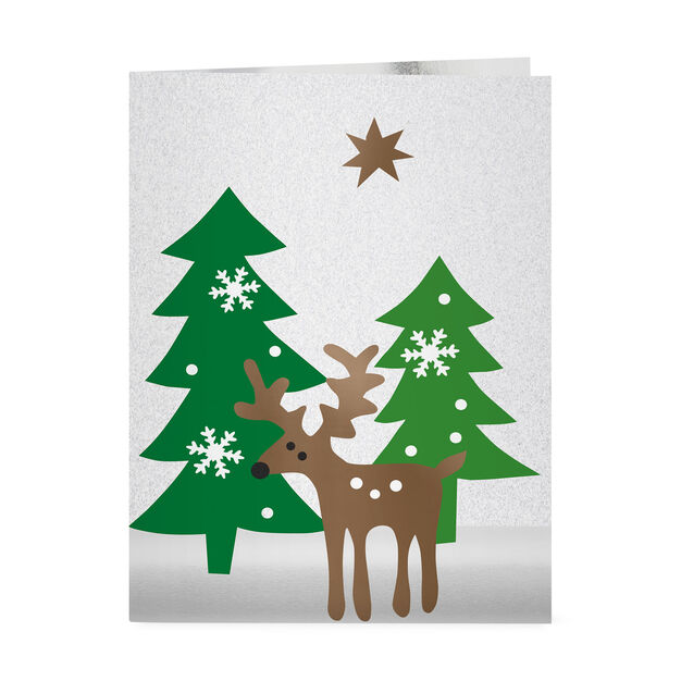 Holiday Evergreen Holiday Cards in color