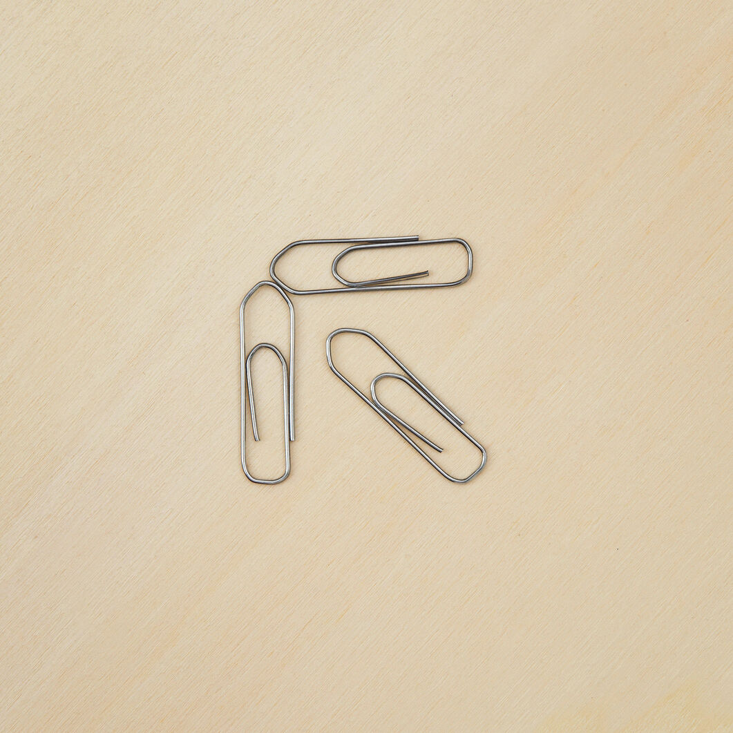 Leone Dell'Era Galvanized Paperclips in color