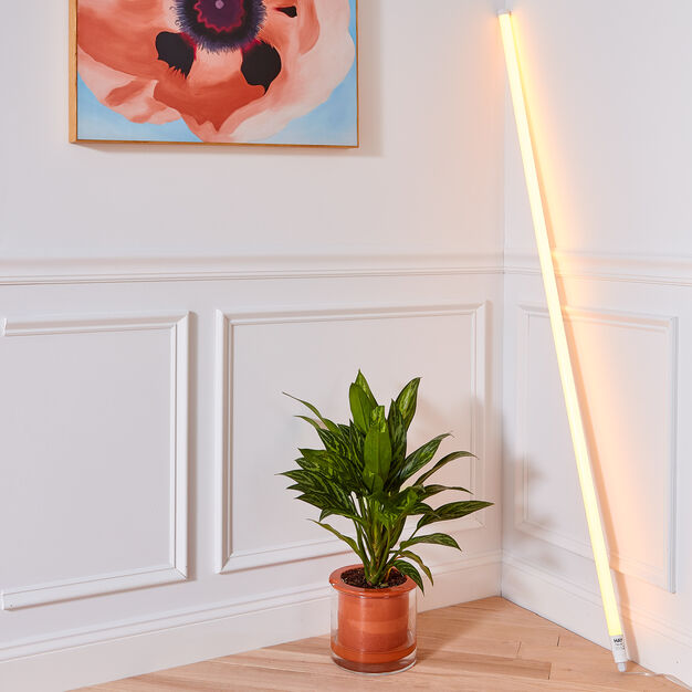 HAY Neon LED Tube Light in color Yellow