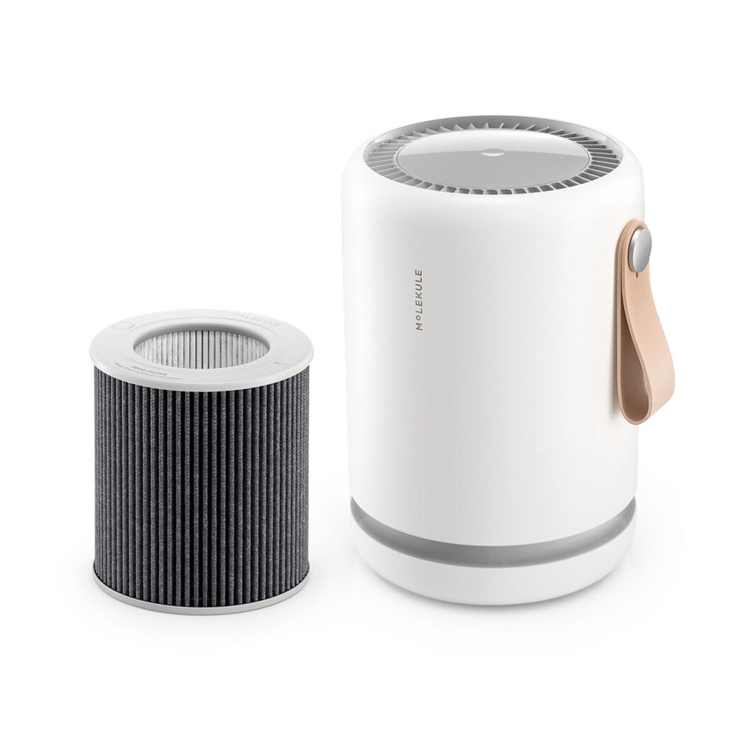 Molekule Air Mini+ Purifier in color