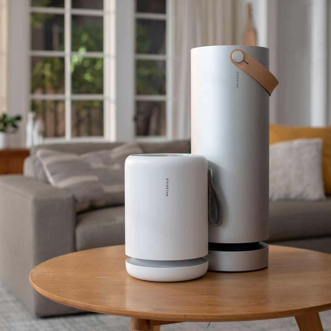 Molekule Mini Air Purifier in color