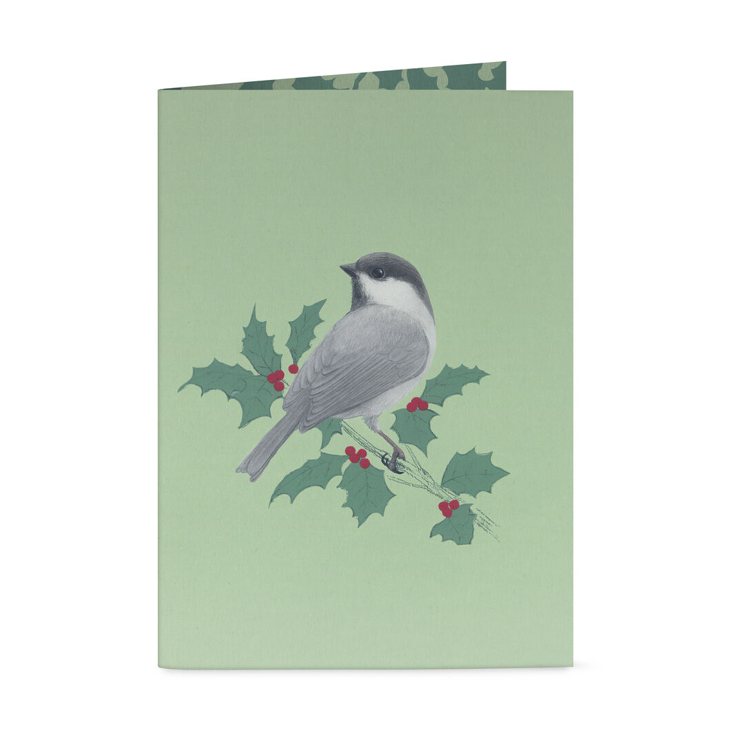 Birds in Flight Holiday Cards in color