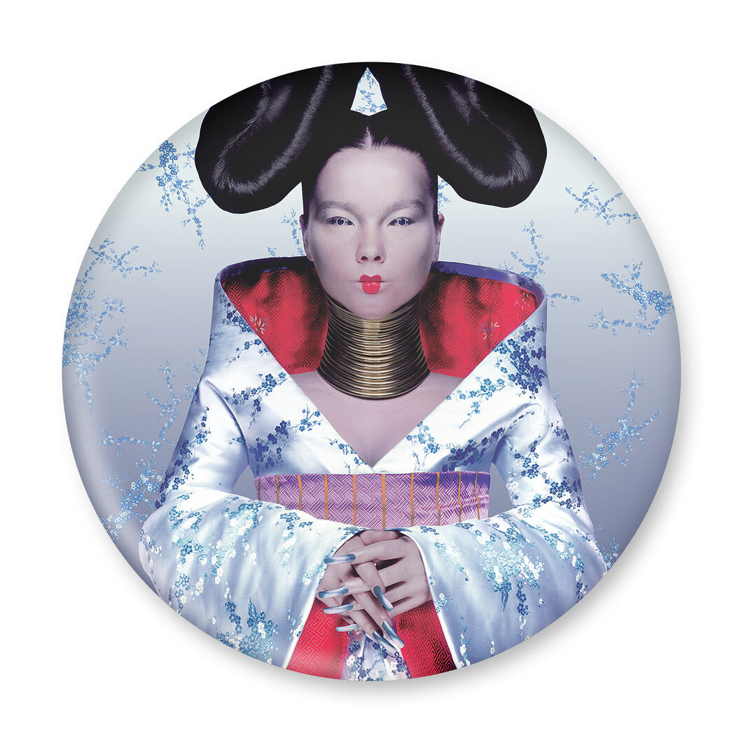 Bjork Homogenic Magnet in color Homogenic