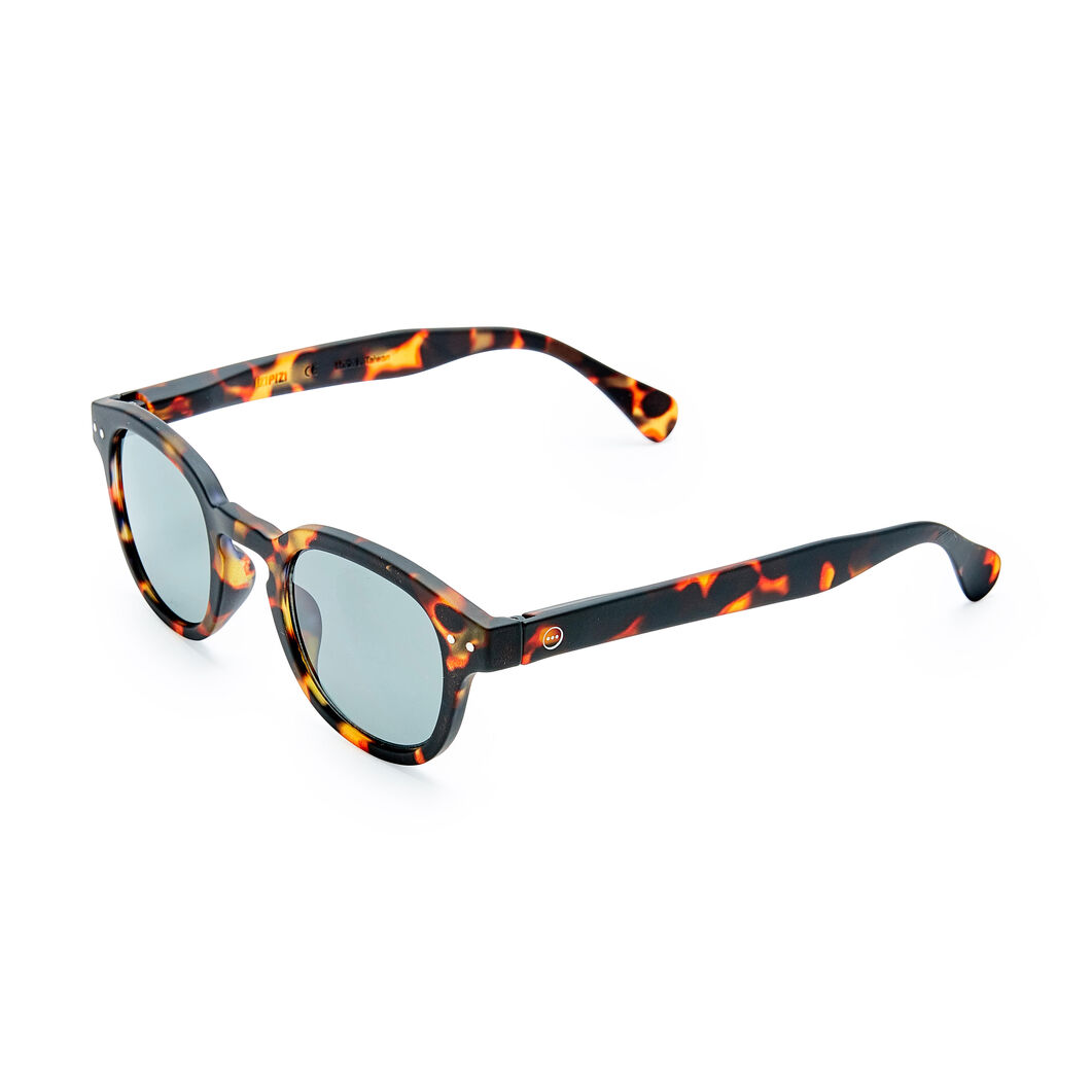 IZIPIZI Rounded-Edge Square Sunglasses #C in color Tortoiseshell