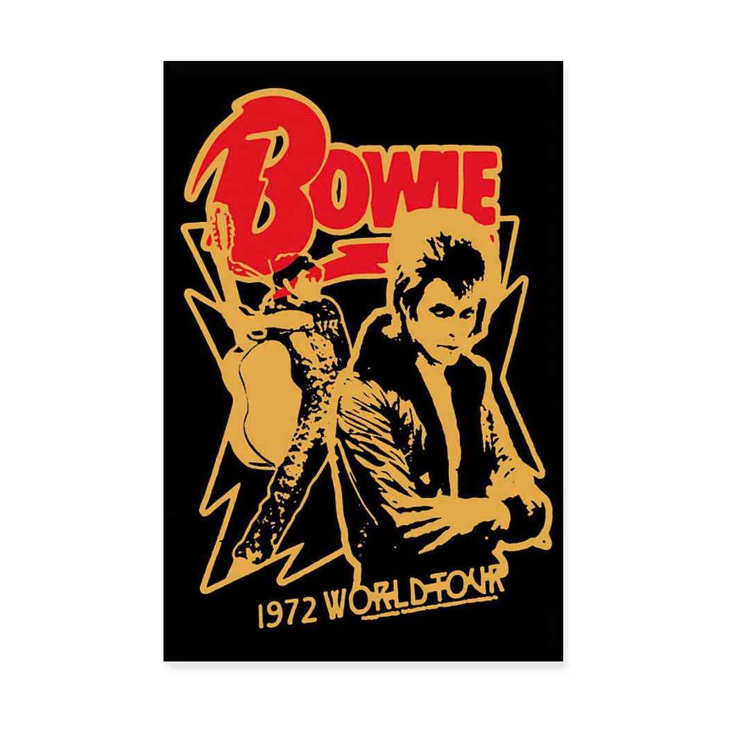 David Bowie: 1972 World Tour Poster in color