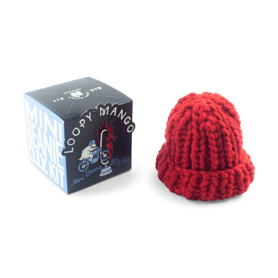 Loopy Mango DIY Kids Beanie Knit Kit in color