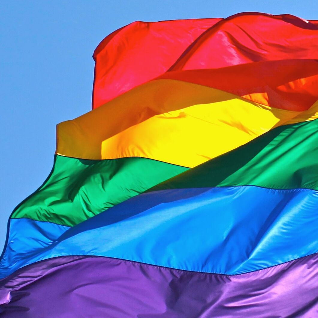 Rainbow Flag in color