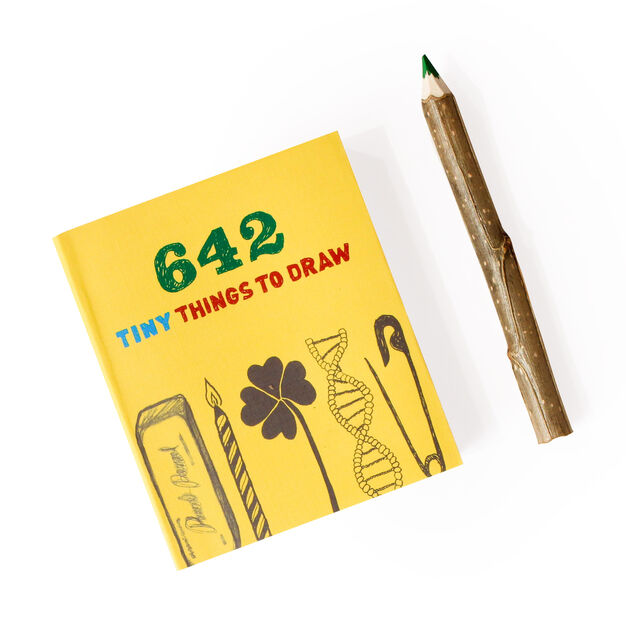 Tiny Things to Draw Activity Book - Paperback in color
