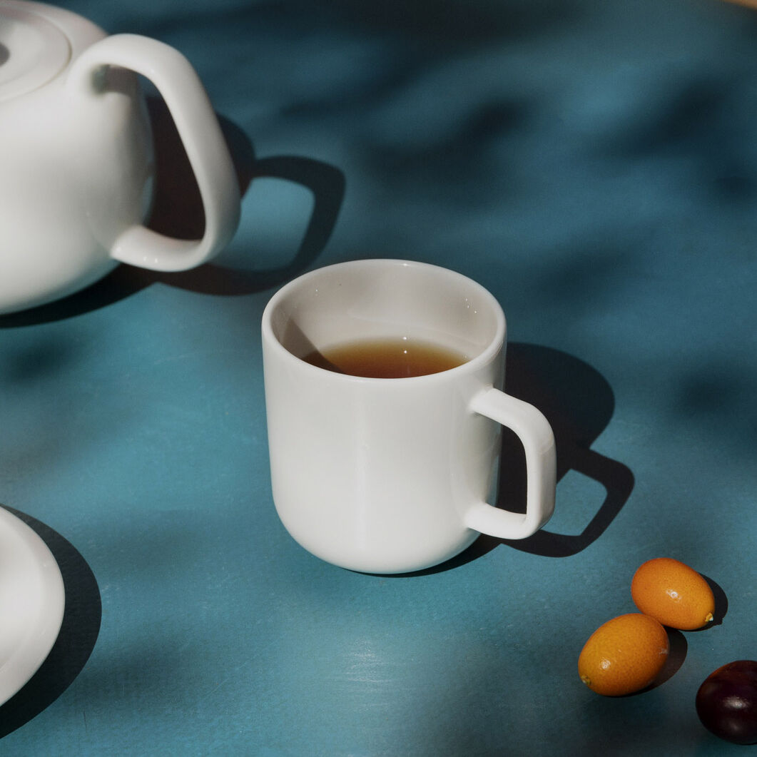 Iittala Raami Porcelain Mug in color
