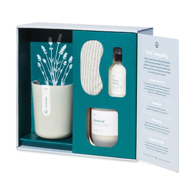 Modern Sprout Plant Gift Sets in color Purple