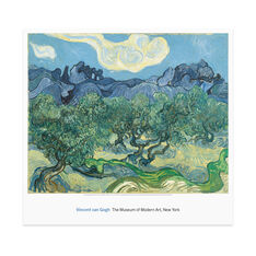 Poster  van Gogh: The Olive Trees in color