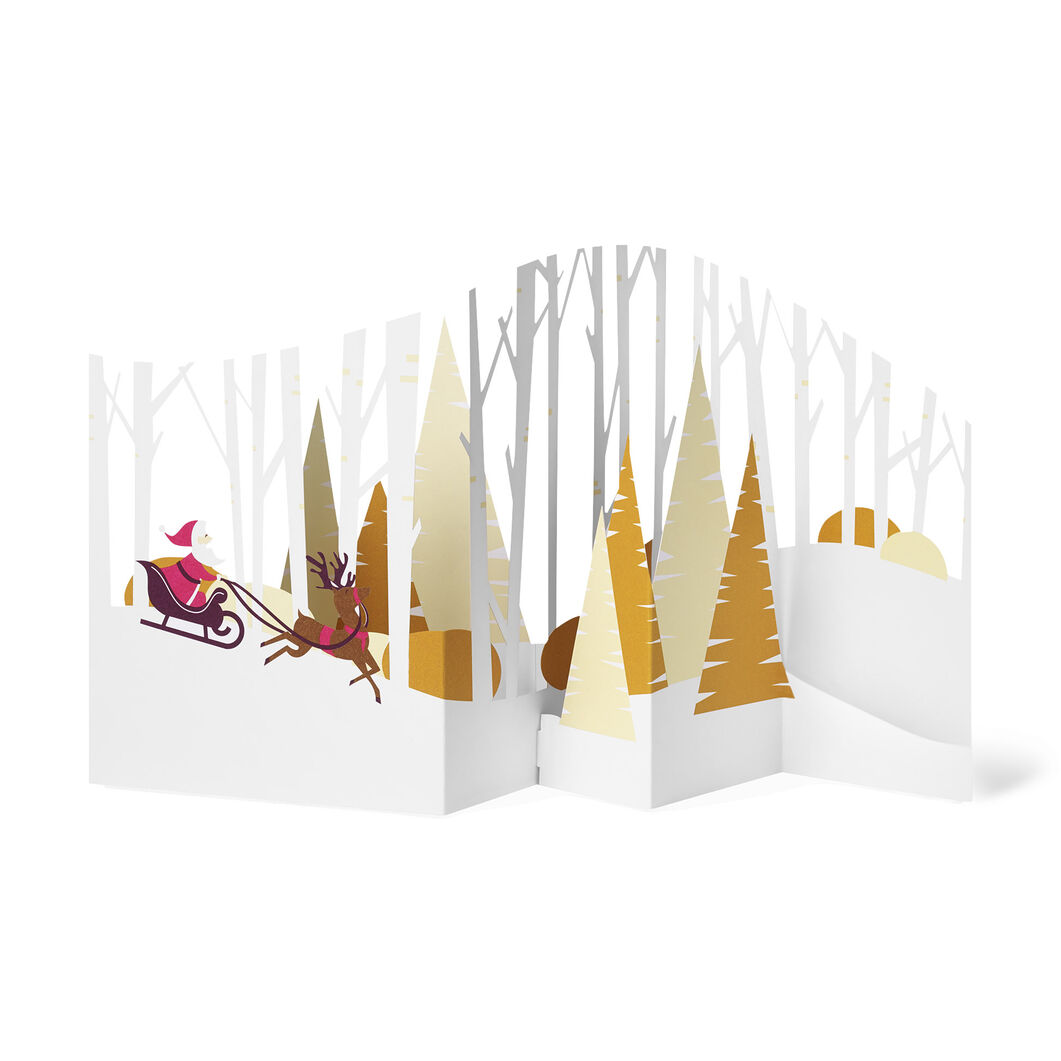 Forest Sleigh Ride Holiday Cards(Box of 8) in color