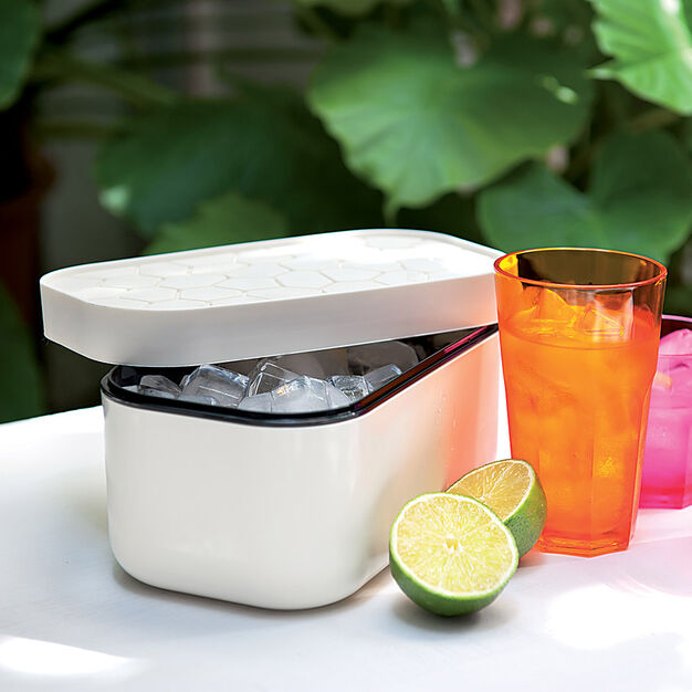 Reversible Lid Ice Box in color Off White