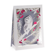 Wintry Owl Holiday Cards in color