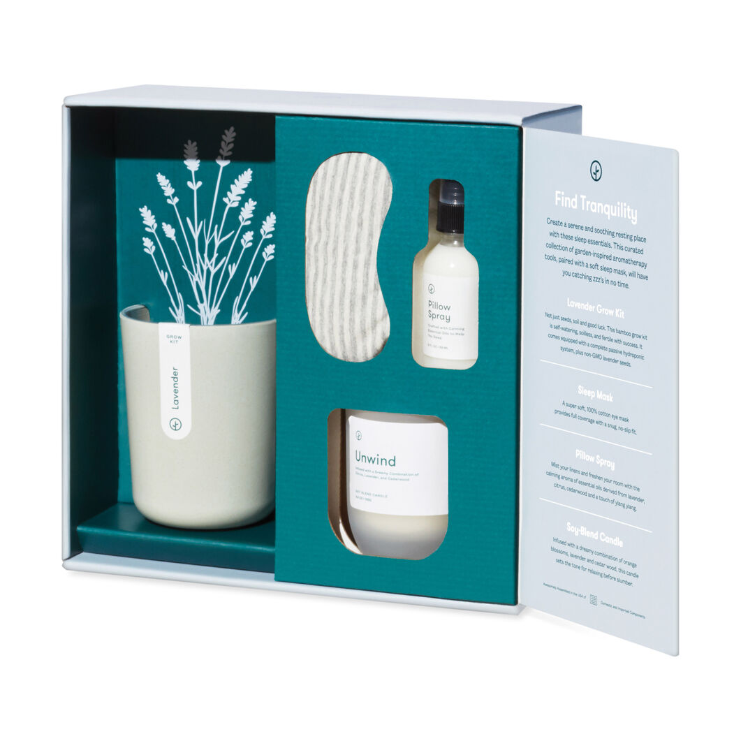 Modern Sprout Plant Gift Sets in color Lavender