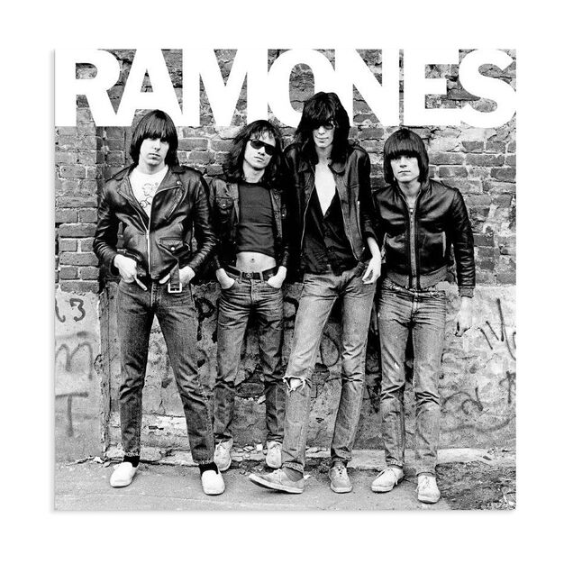 The Ramones: Ramones Vinyl Record in color